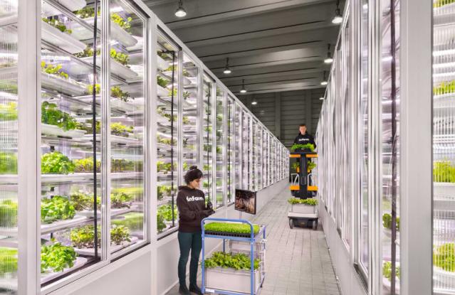 In.farm Como será a alimentação do futuro | Flavors & Botanicals