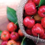 Acerola: fonte de vitamina C natural aplicada em produtos cárneos