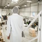 Como a cultura Lean pode ajudar a indústria de alimentos a ser mais competitiva